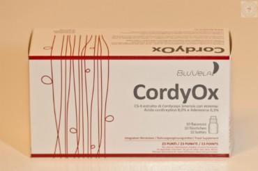 CordyOx